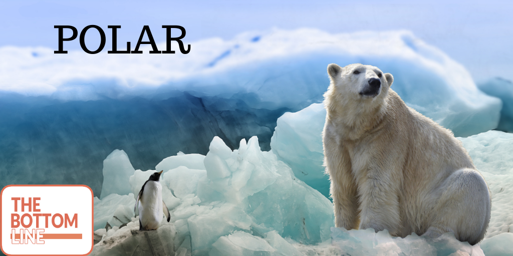 POLAR – The Bottom Line